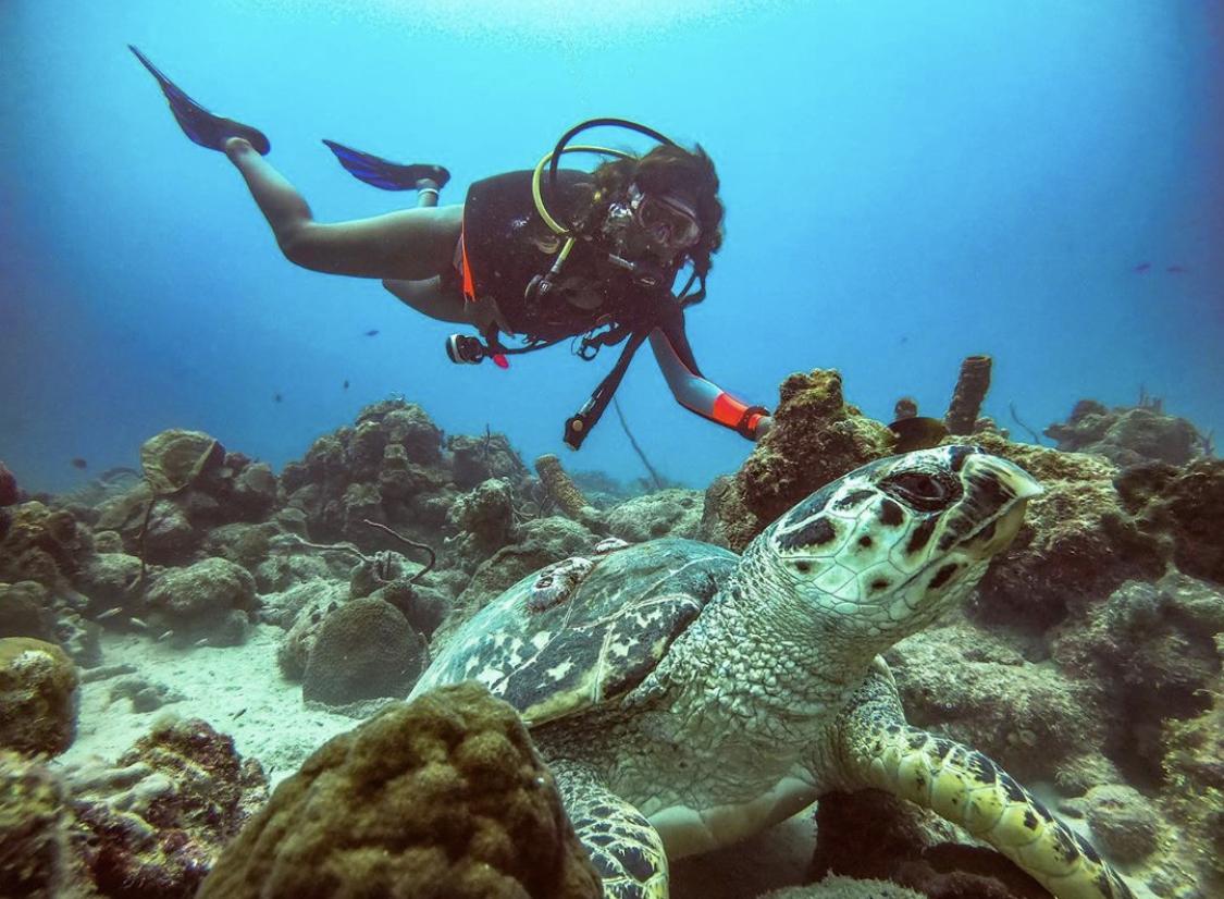 Scuba Diving around Qatar